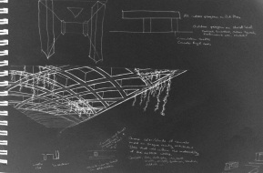 Sketch of waffle slab soffit with spanish moss growing